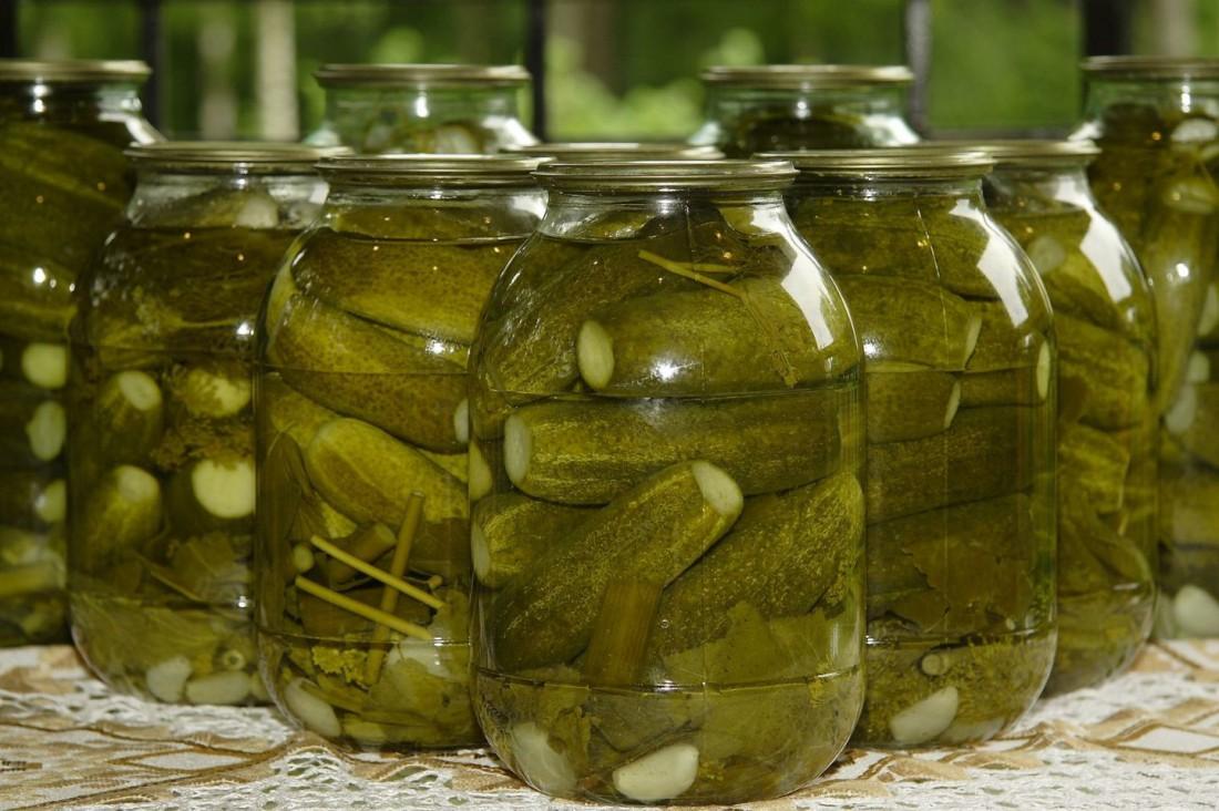 Соленые огурцы — идеальный ингредиент к застолью с водкой