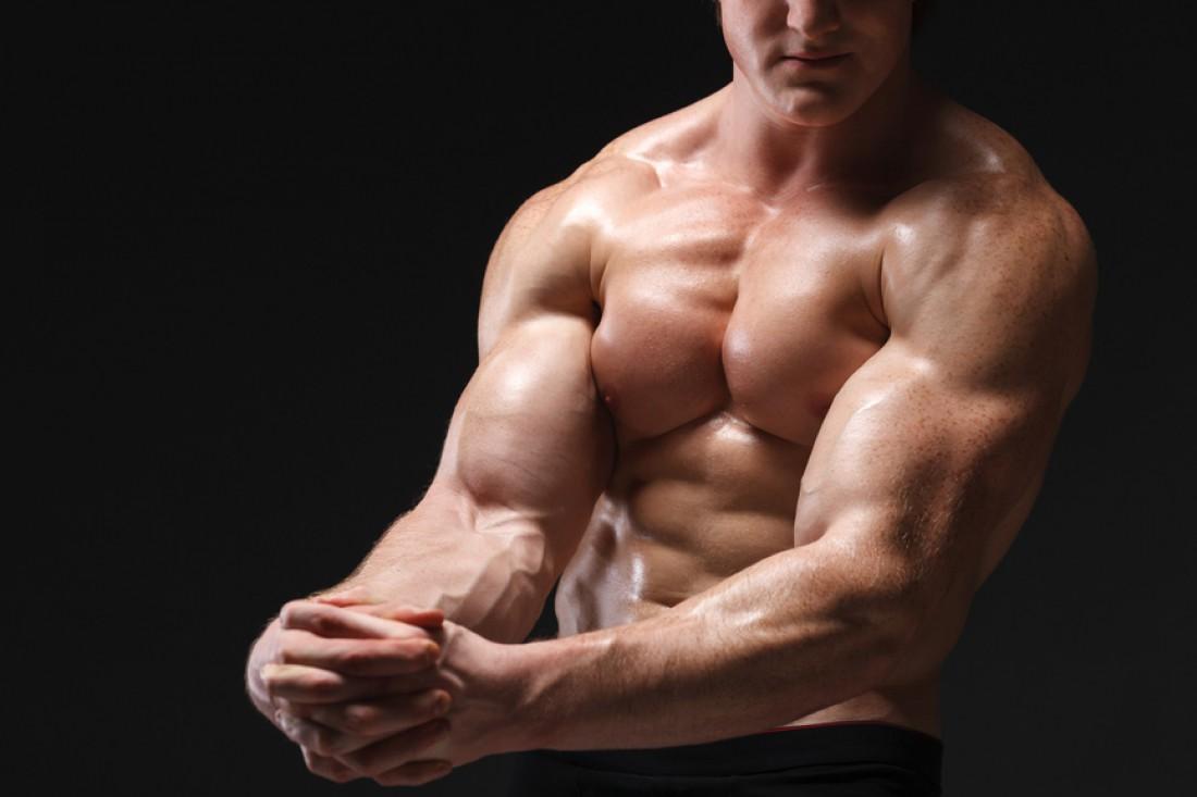 Для красивого тела нужно качать все группы мышц