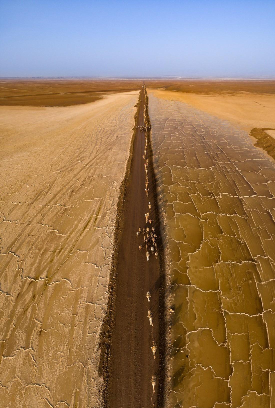 Каждый день верблюды проходят 80 км с соляными плитами на горбу