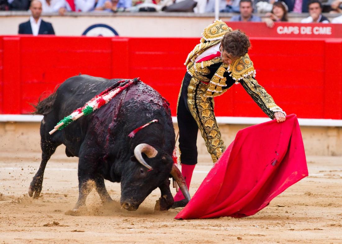 Злой бык и матадор. Ярость