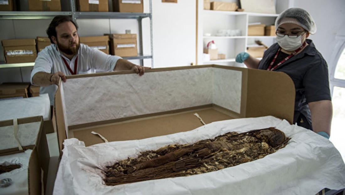 Расшифровано ДНК древнейших мумий наЗемле