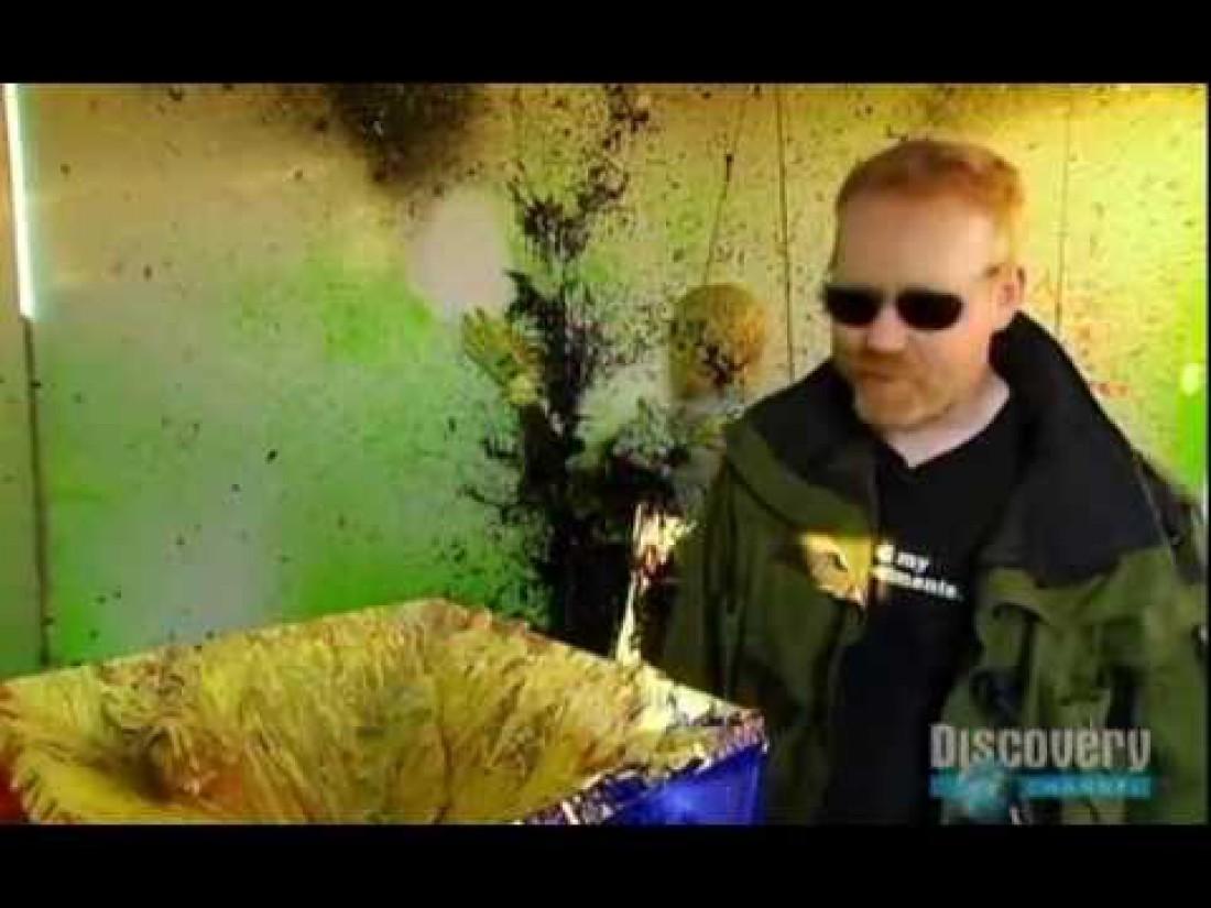 Адам Сэвидж в окрашенной взрывом комнате