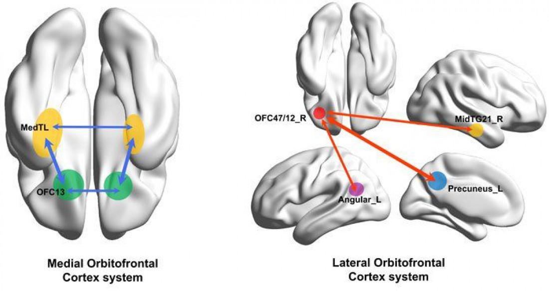 Ученые определили источник депрессии - ТЕХНО bigmir)net