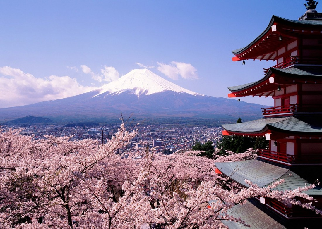 Путешествовать по Японии лучше весной — когда цветут сакуры