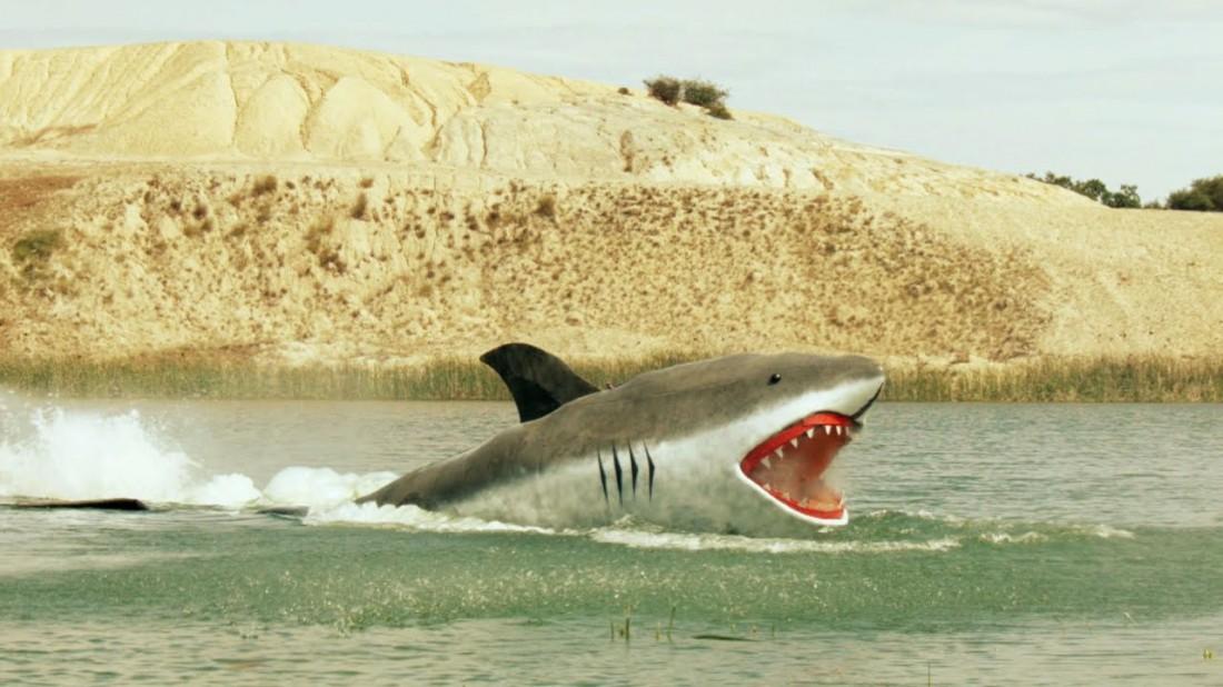 Еще одна из псевдо-акул