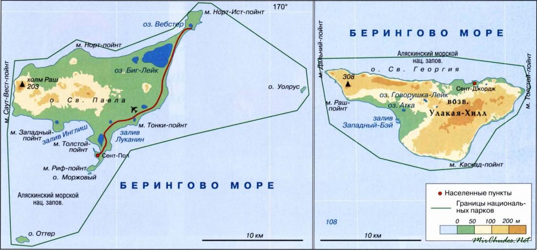 Практически весь остров Святого Георгия покрыт безлесной тундрой и только кое-где мелкими кустарниками