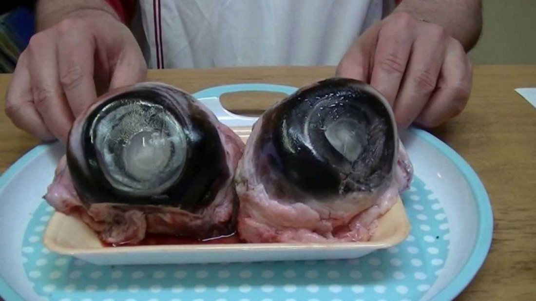 Глазное яблоко тунца (Tuna Eyeball)