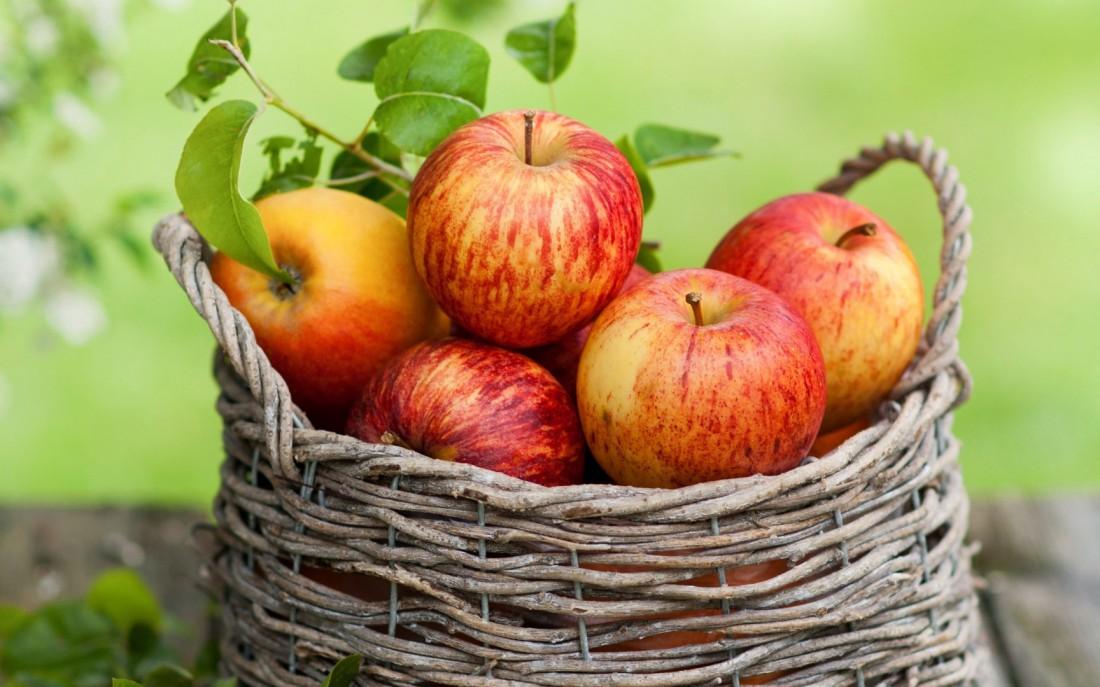 Не объедайся косточками яблок — они содержат синильную кислоту