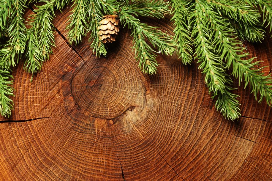 Не снимай с елки шишки. Они тоже сгодятся в качестве украшения
