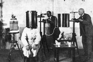 Немецкие ученые проводили опыты по передаче мыслей собаке от человека