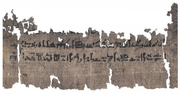 Раздел папируса