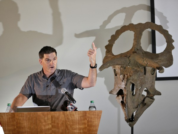 Скелет неизвестного вида динозавра