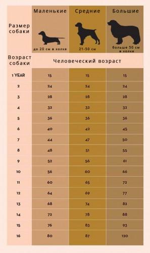 Таблица возраста собак