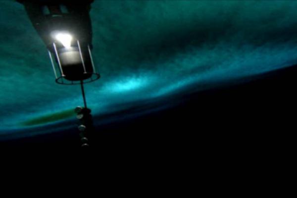 Зонд спустился под лед моря Росса