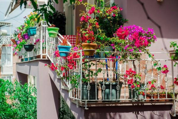 Как оформить цветник на балконе