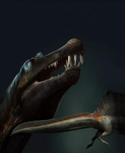 Спинозавр охотился в воде