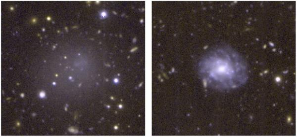 Снимок обычной спиральной галактики (справа) и ультрадиффузной галактики DGSAT I. Обе имеют сходный размер, но ультрадиффузная галактика заметно тусклее
