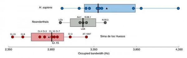 Ширина полосы частот современных людей (синий), неандертальцев (серый) и гоминин Сима (красный)