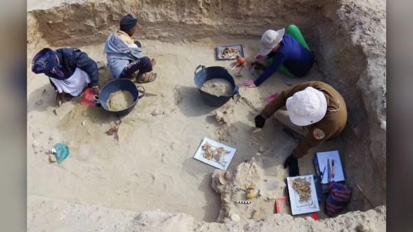 Раскопки на месте захоронений