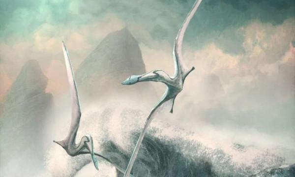 Cimoliopterus - один из 75 видов птерозавров, изучаемых учеными
