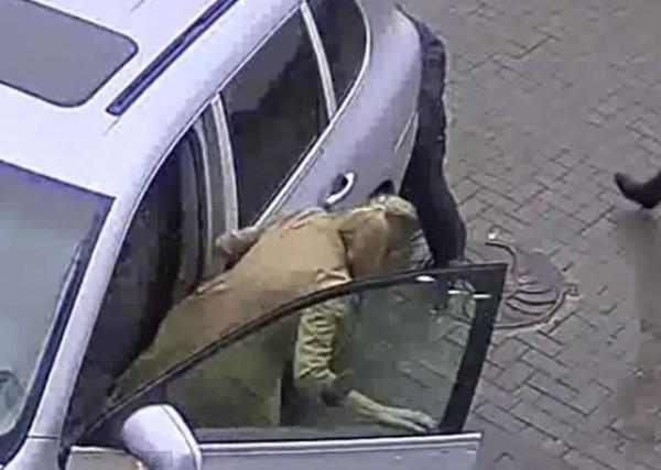 За рулем Porsche Cayenne была 43-летняя женщина