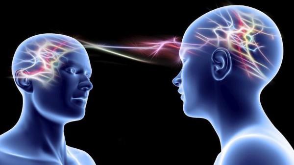Ученые соединили мозги в одну сеть