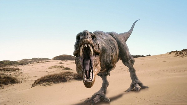 Внешний вид динозавра вполне может быть не таким, как рисуют хужожники