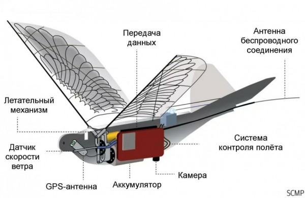 Устройство дрона