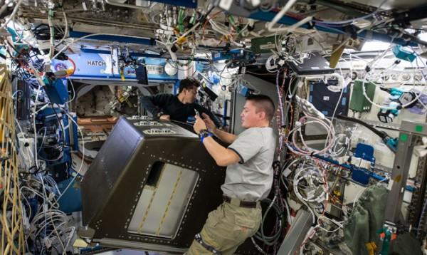 На МКС обнаружили опасные бактерии
