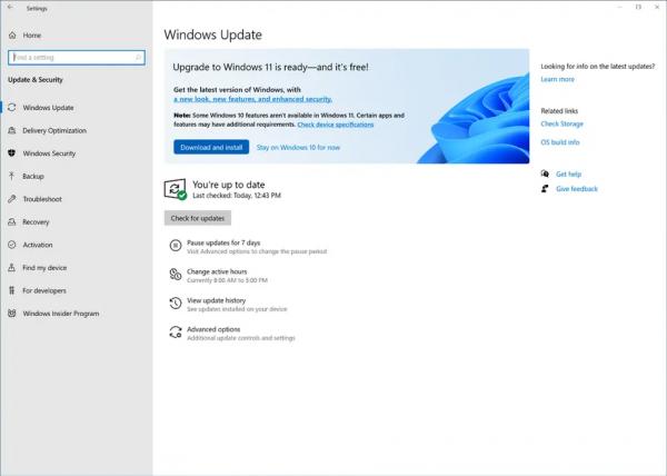Приглашение к обновлению Windows 11 для инсайдеров Release Preview