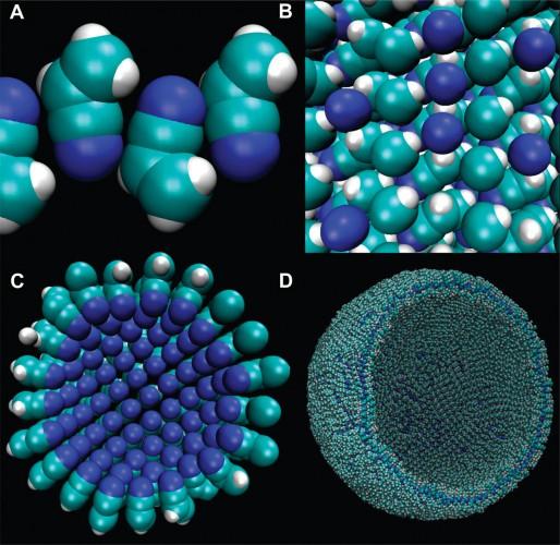 Модель азотосомы