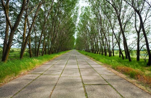 На юге страны появится первая бетонная трасса