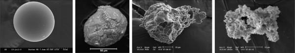 Снимки под микроскопом четырех частиц внеземной пыли, обнаруженных исследователями в Антарктиде