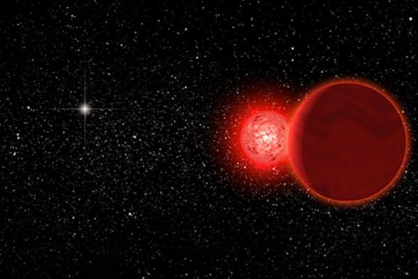 Солнце похитило планеты у другой звезды?