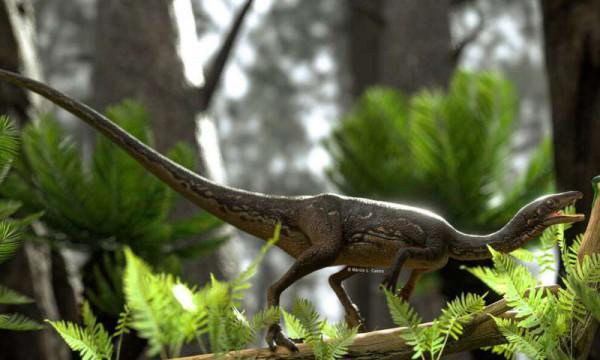 Buriolestes охотятся на маленького лепидозавроморфа в триасовом ландшафте Бразилии