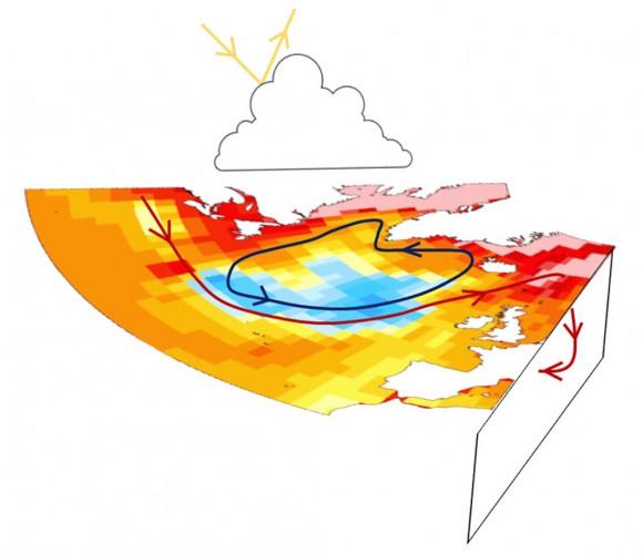AMOC обозначен красными стрелками, циркуляция круговорота синими стрелками и обратная связь облака в виде отраженного коротковолнового излучения желтыми стрелками