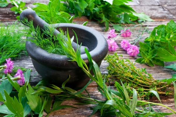 Как улучшить потенцию при помощи трав