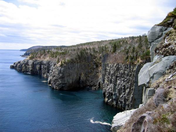 Ньюфаунленд