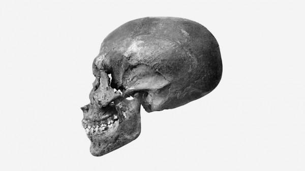 Когда археологи раскопали KV 55 в 1907 году, мумия рассыпалась в пыль. Сегодня остались только кости