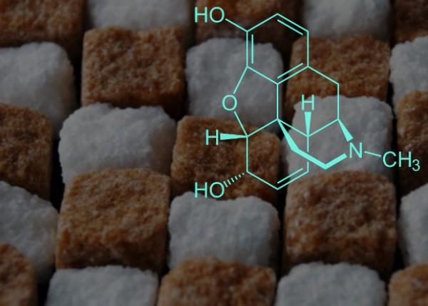 Из глюкозы получили алкалоид опия