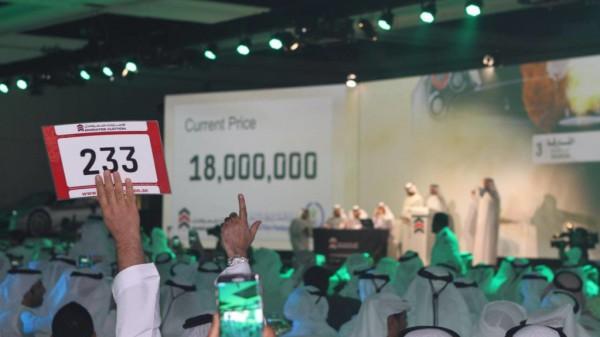 Финальная ставка в 18 000 000 дирхамов (4 900 000 долларов по текущему курсу)