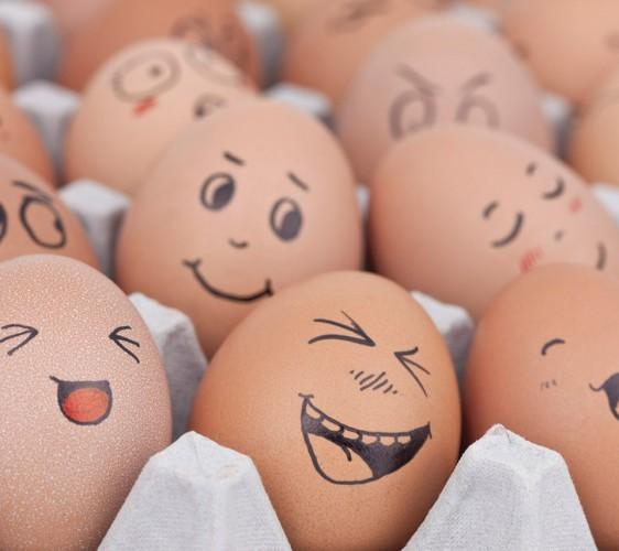 Над Кизом смеются даже яйца