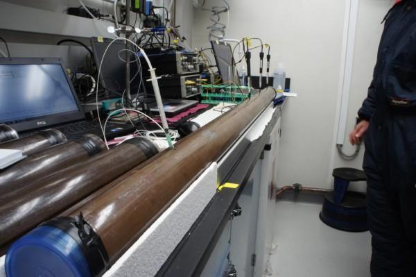 Керны донных отложений, взятые со дна моря, в которых обнаружены живые бактерии