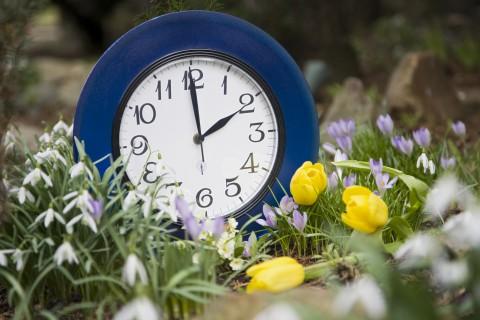 Выходные и праздничные дни май 2013 года