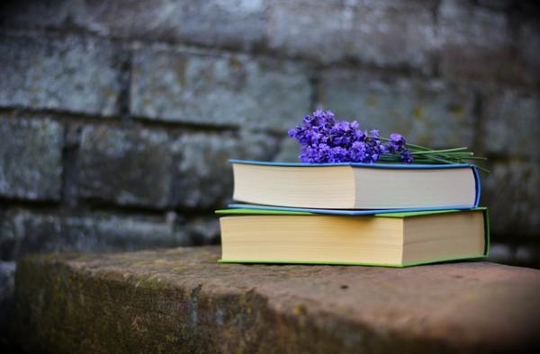 Названы претенденты премии Украинская книга года