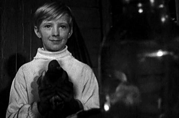 Кадр из фильма А.Кончаловского Мальчик и Голубь