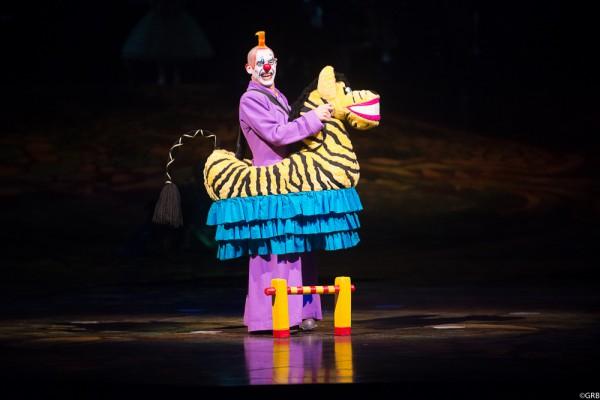 цирк дю солей алегрия:
