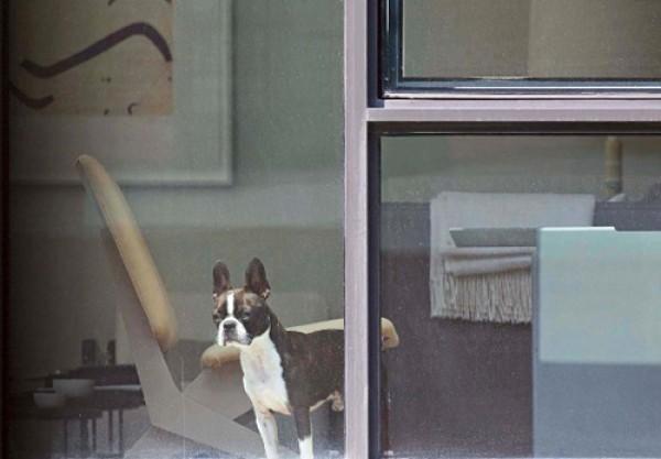 Фотограф Арне Свенсон подглядывал за своими соседями, за что те подают на него в суд