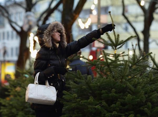 Елки в столице начнут продавать с 15 декабря