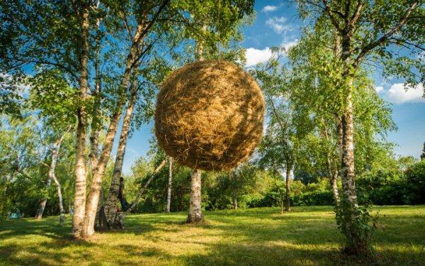 Проект Лунный Карин ван дер Молен (Нидерланды)